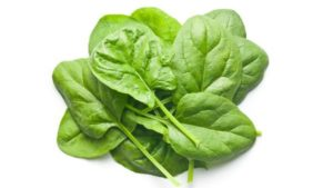 Spinach, Baby